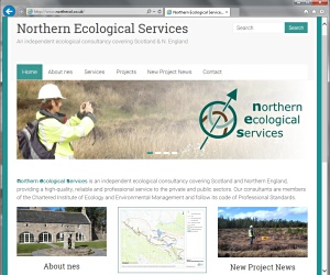 Northern Ecological Services